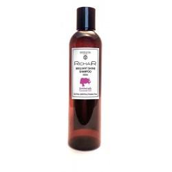Шампунь для волос Бриллиантовый Блеск с кокосовым маслом RICHAIR Egomania Professional Collection